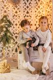 Beautiful baby girls near a Christmas tree with gifts. With little boy feeding black vietnamese piglet. Concept of the Chinese New Year 2019 of the Pig royalty free stock images