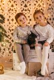 Beautiful baby girls near a Christmas tree with gifts. With little boy feeding black vietnamese piglet. Concept of the Chinese New Year 2019 of the Pig stock photography