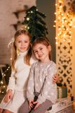 Beautiful baby girls near a Christmas tree with gifts. With little boy feeding black vietnamese piglet. Concept of the Chinese New Year 2019 of the Pig royalty free stock photos