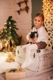Beautiful baby girls near a Christmas tree with gifts. With little boy feeding black vietnamese piglet. Concept of the Chinese New Year 2019 of the Pig royalty free stock photography