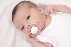 Beautiful baby lying down on white sheets with a pacifier in his mouth. Cute new born baby boy with a binky Royalty Free Stock Photography