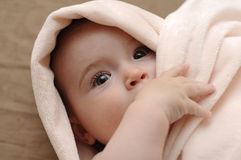 Beautiful baby in a pink blanket Royalty Free Stock Photo