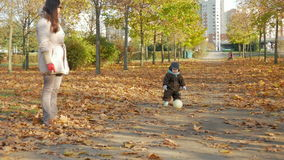 Beautiful baby is playing in autumn park with her mother about fallen leaves. A child plays with a white soccer ball stock video