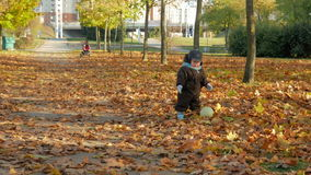 Beautiful baby is playing in autumn park with her mother about fallen leaves. A child plays with a white soccer ball stock video footage