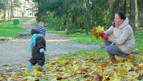 Beautiful baby is playing in autumn park with her mother about fallen leaves. The child is warmly dressed in a suit and stock footage
