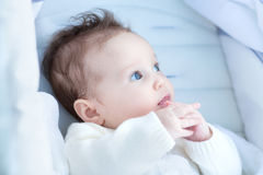 Beautiful baby relaxing in a stroller Royalty Free Stock Images