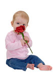Beautiful baby and rose Royalty Free Stock Photos
