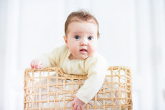 Beautiful baby smiling out of a wicker basket. Beautiful little baby smiling out of a wicker basket royalty free stock images