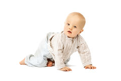Beautiful baby on white background. Cute child. Little kid Stock Images