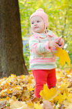 Beautiful baby in the woods. Beautiful baby girl in the woods with a maple leaf stock photo