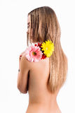 Beautiful back. Image of a beautiful back with flowers Stock Image