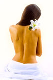 Beautiful back Royalty Free Stock Images