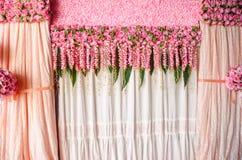Beautiful backdrop pink rose flowers. Stock Image