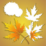 Beautiful background with autumn leaves Stock Photography