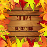 Beautiful background with autumn leaves on wooden surface. Royalty Free Stock Images