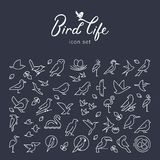 Vector flat birds icon set in thin line style. Simple minimalistic bird logo. Birds icon, animal sign, symbol isolated on stock illustration