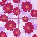Beautiful background of Chamomiles. Seamless mosic square background with daisy flowers Stock Images