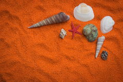 Beautiful background of colored sand, shells, stones and place f Stock Images