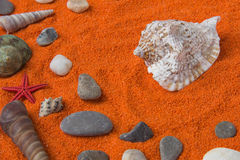 Beautiful background of colored sand, shells, stones and place f Stock Image