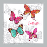 Beautiful background of colorful butterflies. And roses. hand-drawn illustration royalty free illustration