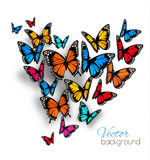 Beautiful Background With Colorful Butterfly. Royalty Free Stock Photography