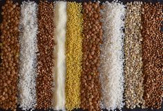 Beautiful composition of different grains on the table: buckwheat, millet, semolina, lentils, pearl barley, rice. royalty free stock photo