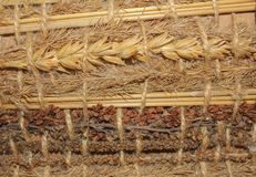 Beautiful background of dried herbs. Different dry cereals and h. Erbs together. Background of dry grass stock photography