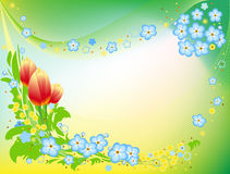 Beautiful background with flowers Royalty Free Stock Image
