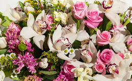 Beautiful background of flowers bouquets,Flower bouquet composition for the holiday, festive bouquet of flowers for a wedding, hya Royalty Free Stock Images