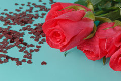 Beautiful background with flowers roses Stock Photos