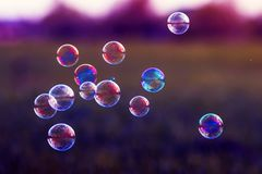 Beautiful background with flying bubbles shimmering in the sun in lilac tones. Festive beautiful background with flying bubbles shimmering in the sun in lilac stock photos