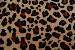 Beautiful background with fur with leopard coloring royalty free stock photos
