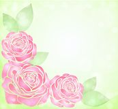 Beautiful background with glitter and pink roses with leaves in the corner Royalty Free Stock Image