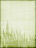 Beautiful background with grass Stock Photos