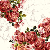 Beautiful background or invitation with rose flowers Stock Photos