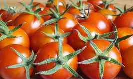 Background from red tomato Royalty Free Stock Photo
