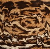 Abstract closeup of ocelot fur coat. Beautiful background texture pattern of abstract fur coat of ocelot Royalty Free Stock Photos
