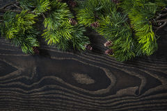 Beautiful background of tree branches for the Christmas and New Year greeting card Royalty Free Stock Image