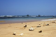 Beautiful background of  tropic ocean beach Stock Photo