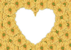 Beautiful background of yellow daisy flower made heart shape Stock Images