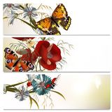 Beautiful backgrounds set with flowers and butterflies. Set of floral brochures with field flowers for design Royalty Free Stock Photography