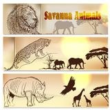 Beautiful backgrounds set with savanna animals Royalty Free Stock Photo