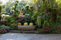 Beautiful backyard garden park scene Royalty Free Stock Photos