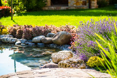 Beautiful backyard landscape design. View of colorful trees and decorative trimmed bushes rocks royalty free stock image