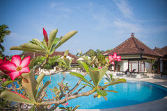 Beautiful Bali pool. Beautiful hotel  pool in Bali, Indonesia Stock Photos