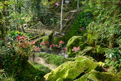 Beautiful Balinese garden in Bali, Indonesia Stock Photos