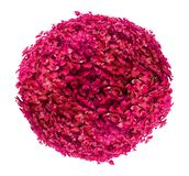 Beautiful ball shaped pink/red bush isolated on white background royalty free stock image