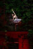 Beautiful ballerina dancing ballet dance Royalty Free Stock Photos