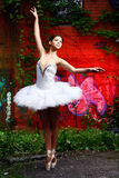 Beautiful Ballerina Dancing Ballet Dance Stock Photo