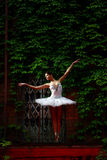 Beautiful ballerina dancing ballet dance Royalty Free Stock Photos